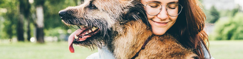 Arthritis In Dogs: Common Veterinary Treatment Options